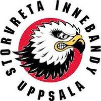 Säljare till vår samarbetspartner Storvreta IBK